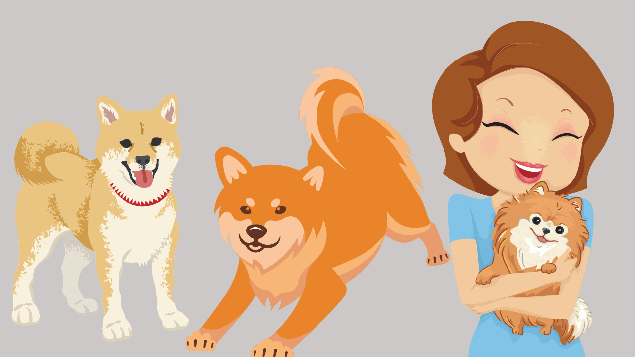 Do Shiba Inus Like To Cuddle With Their Owners?